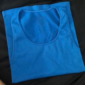 Blue sugarlip